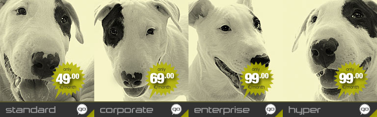 Image banner for the Standard dedicated server offered by Hostdog