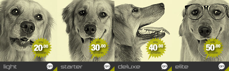 Hostdog resellers deluxe package banner image